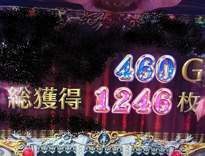 1246枚