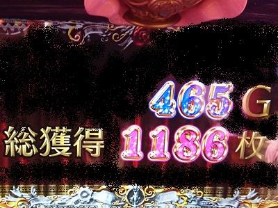 1186枚