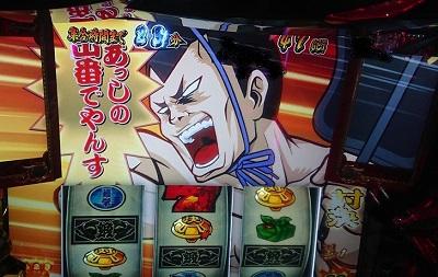 チャッピー相撲勝利