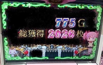 2026枚