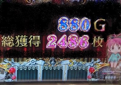 2486枚